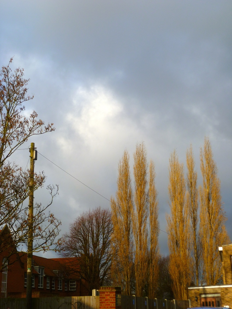 Frozen winter sky.