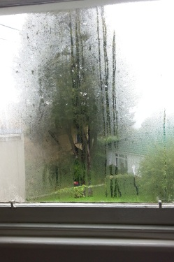 Rainy, autumnal weekends.